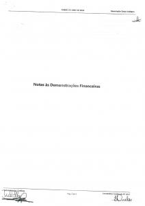 Anexo Demonstrações Financeiras-01